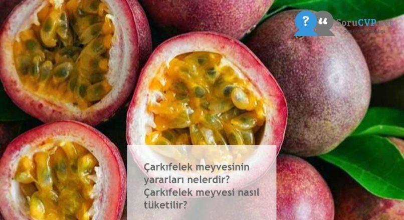 Çarkıfelek meyvesinin yararları nelerdir? Çarkıfelek meyvesi nasıl tüketilir?
