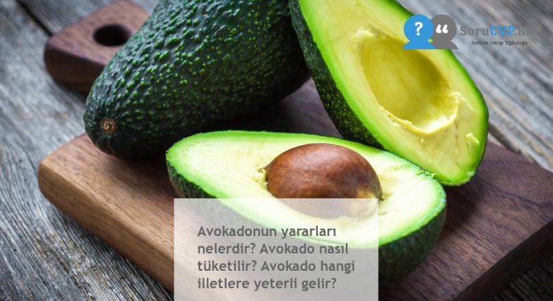Avokadonun yararları nelerdir? Avokado nasıl tüketilir? Avokado hangi illetlere yeterli gelir?