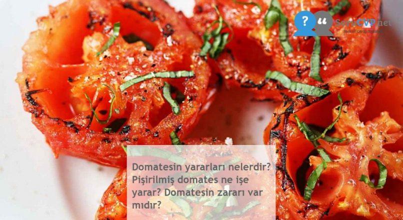 Domatesin yararları nelerdir? Pişirilmiş domates ne işe yarar? Domatesin zararı var mıdır?
