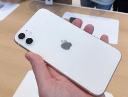iPhone 11 Türkiye Fiyatları Aşikâr Oldu!