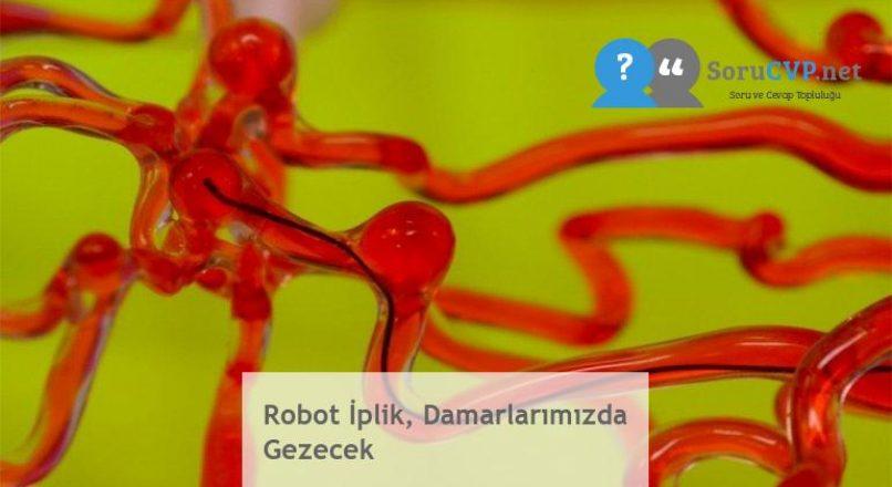 Robot İplik, Damarlarımızda Gezecek