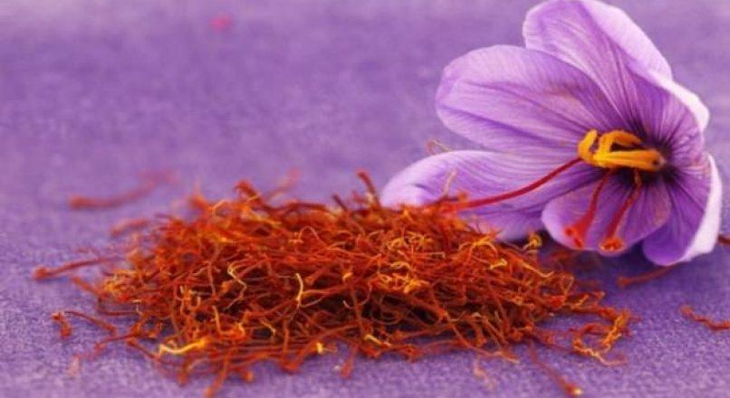 Safran çiçeğinin faydaları nelerdir? Safran çayı nasıl yapılır?