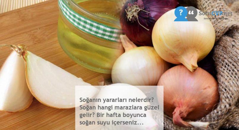 Soğanın yararları nelerdir? Soğan hangi marazlara güzel gelir? Bir hafta boyunca soğan suyu içerseniz…