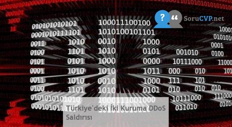 Türkiye'deki İki Kuruma DDoS Saldırısı
