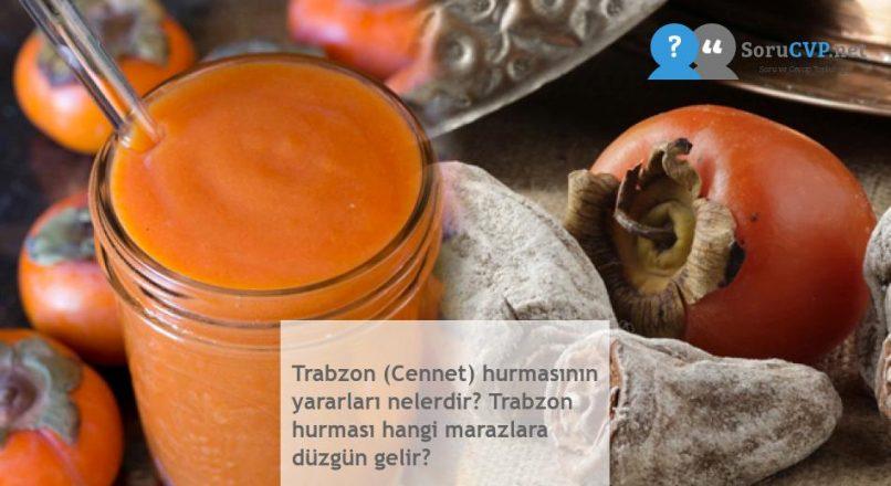 Trabzon (Cennet) hurmasının yararları nelerdir? Trabzon hurması hangi marazlara düzgün gelir?