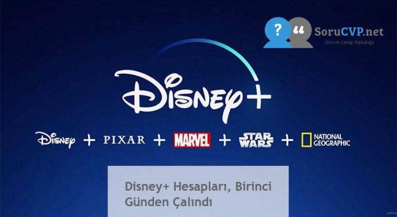 Disney+ Hesapları, Birinci Günden Çalındı