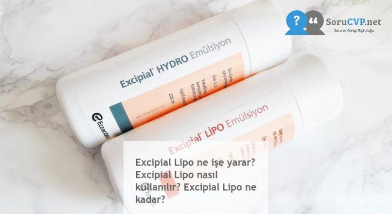 Excipial Lipo : Ne işe yarar? Nasıl kullanılır? [Fiyatı 2020]