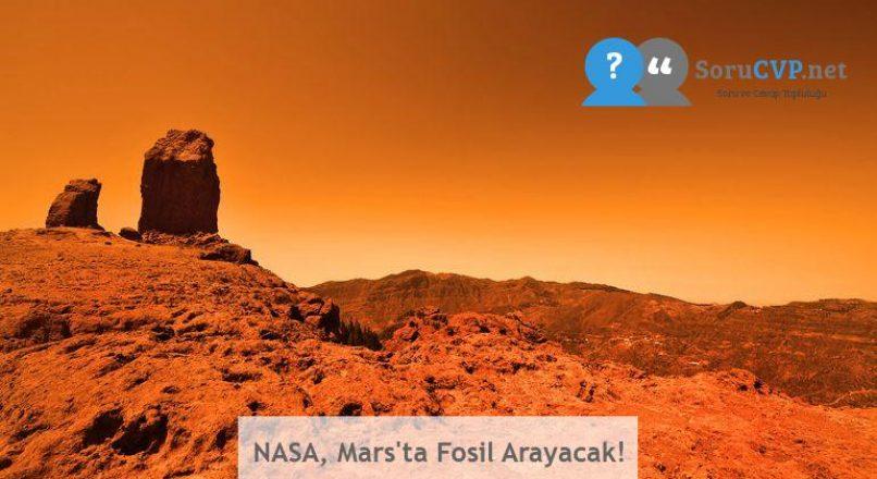 NASA, Mars'ta Fosil Arayacak!