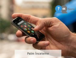 Palm İnceleme