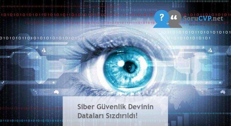 Siber Güvenlik Devinin Dataları Sızdırıldı!