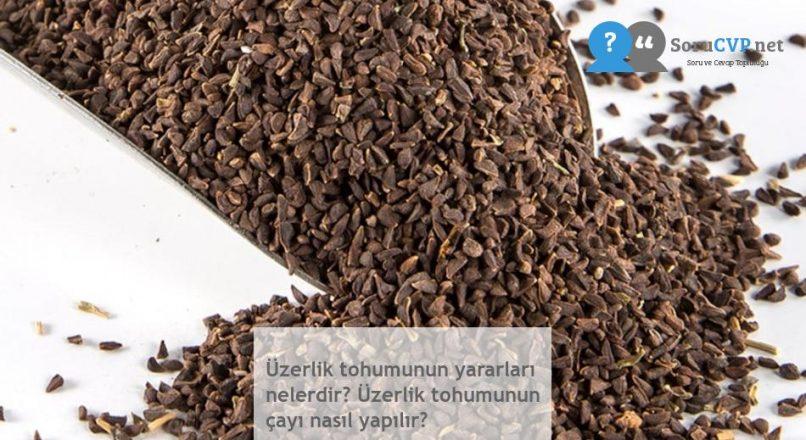 Üzerlik tohumunun yararları nelerdir? Üzerlik tohumunun çayı nasıl yapılır?