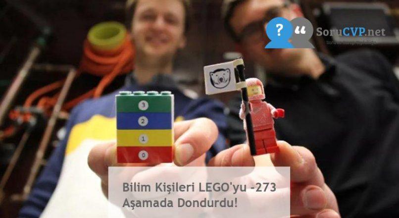 Bilim Kişileri LEGO'yu -273 Aşamada Dondurdu!