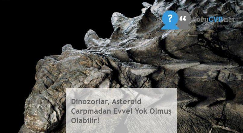 Dinozorlar, Asteroid Çarpmadan Evvel Yok Olmuş Olabilir!