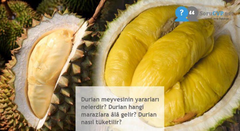 Durian meyvesinin yararları nelerdir? Durian hangi marazlara âlâ gelir? Durian nasıl tüketilir?