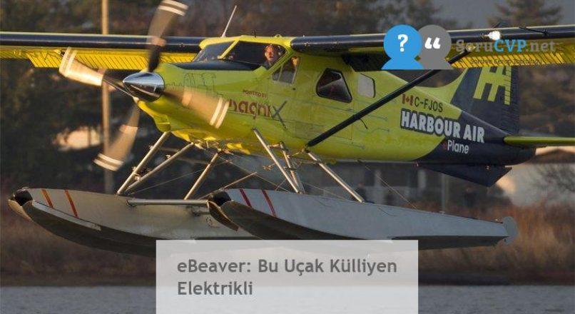 eBeaver: Bu Uçak Külliyen Elektrikli