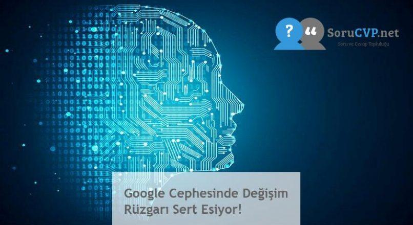 Google Cephesinde Değişim Rüzgarı Sert Esiyor!