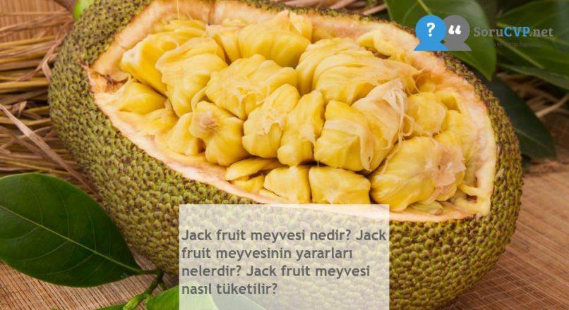 Jack fruit meyvesi nedir? Jack fruit meyvesinin yararları nelerdir? Jack fruit meyvesi nasıl tüketilir?