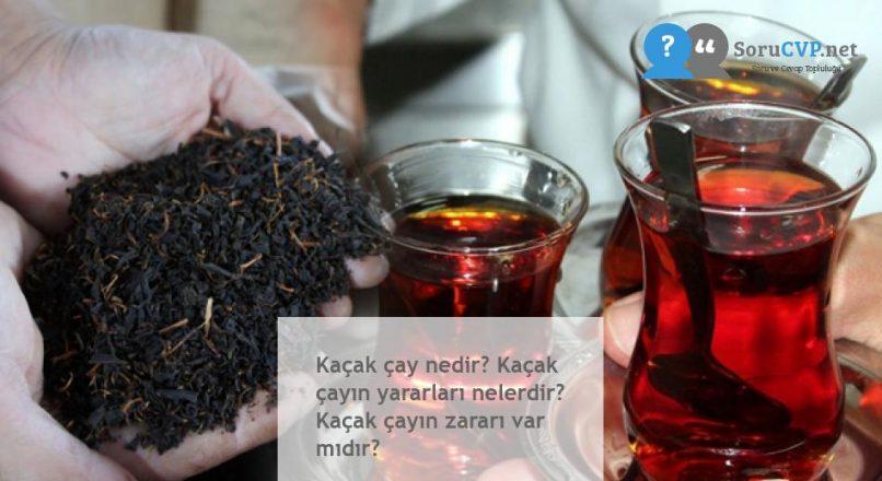 Kaçak çay nedir? Kaçak çayın yararları nelerdir? Kaçak çayın zararı var mıdır?