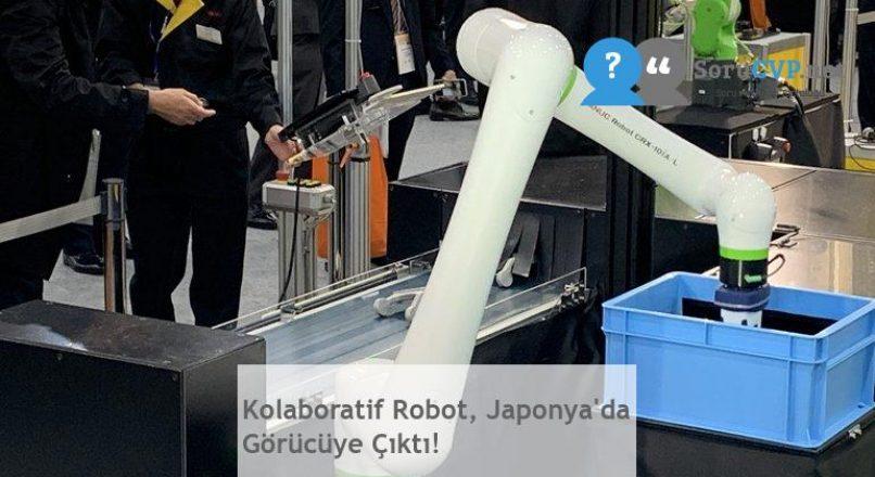 Kolaboratif Robot, Japonya'da Görücüye Çıktı!