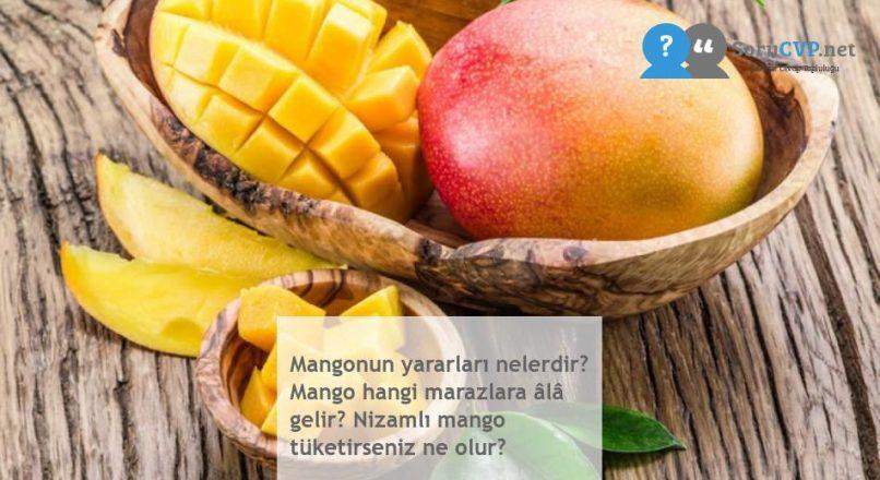 Mangonun yararları nelerdir? Mango hangi marazlara âlâ gelir? Nizamlı mango tüketirseniz ne olur?