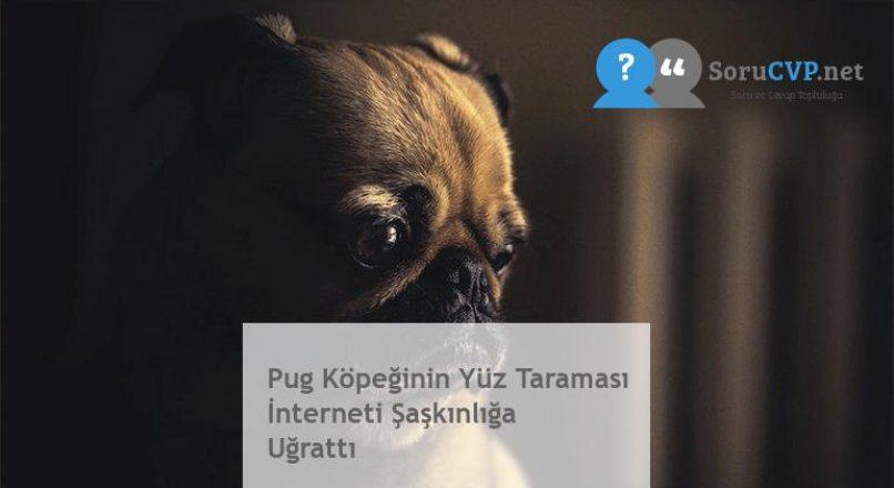 Pug Köpeğinin Yüz Taraması İnterneti Şaşkınlığa Uğrattı