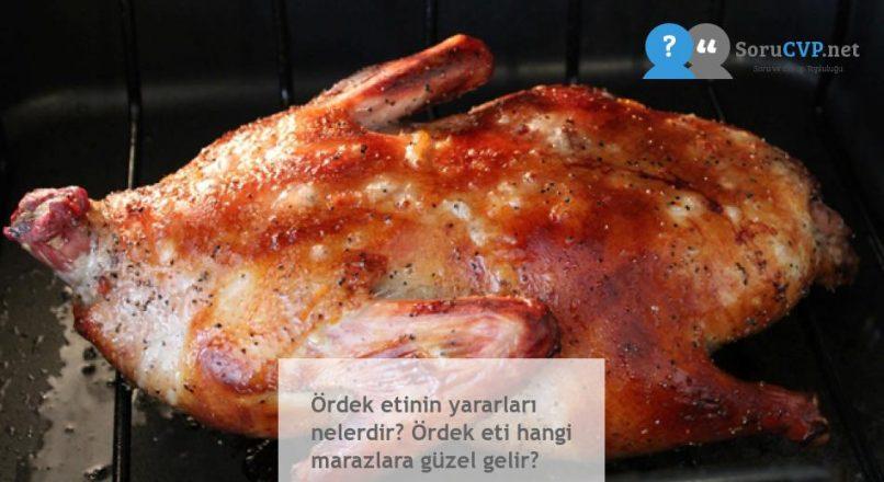 Ördek etinin yararları nelerdir? Ördek eti hangi marazlara güzel gelir?
