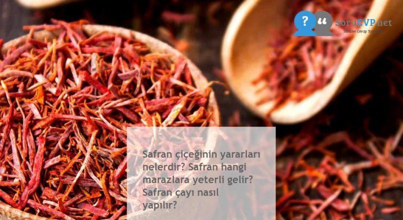 Safran çiçeğinin yararları nelerdir? Safran hangi marazlara yeterli gelir? Safran çayı nasıl yapılır?