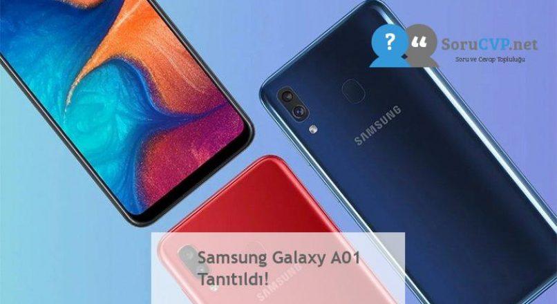 Samsung Galaxy A01 Tanıtıldı!