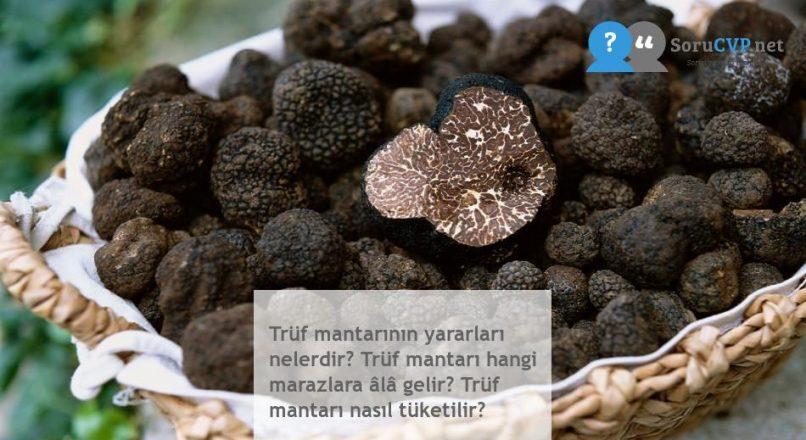 Trüf mantarının yararları nelerdir? Trüf mantarı hangi marazlara âlâ gelir? Trüf mantarı nasıl tüketilir?