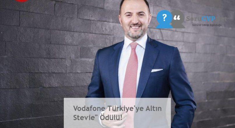 """Vodafone Türkiye'ye Altın Stevie"""" Ödülü!"""