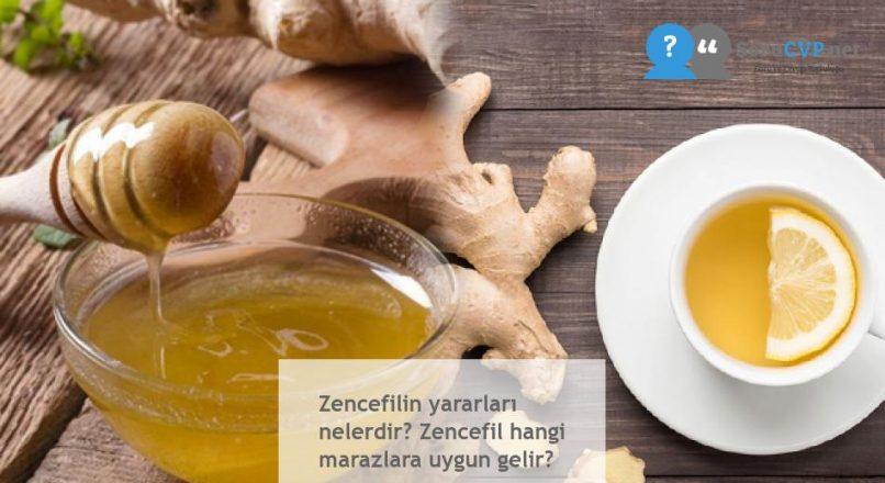 Zencefilin yararları nelerdir? Zencefil hangi marazlara uygun gelir?