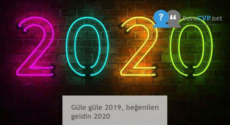 Güle güle 2019, beğenilen geldin 2020