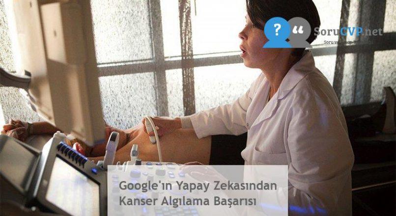 Google'ın Yapay Zekasından Kanser Algılama Başarısı
