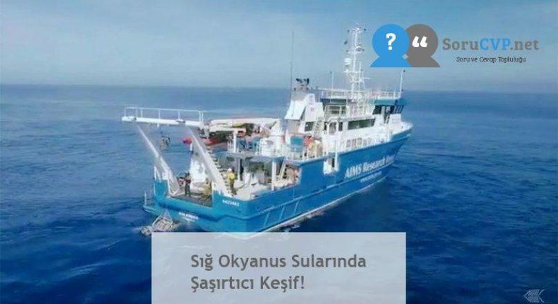 Sığ Okyanus Sularında Şaşırtıcı Keşif!