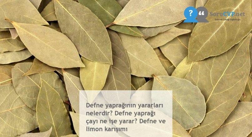 Defne yaprağının yararları nelerdir? Defne yaprağı çayı ne işe yarar? Defne ve limon karışımı