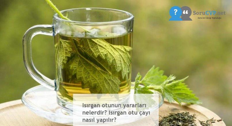 Isırgan otunun yararları nelerdir? Isırgan otu çayı nasıl yapılır?