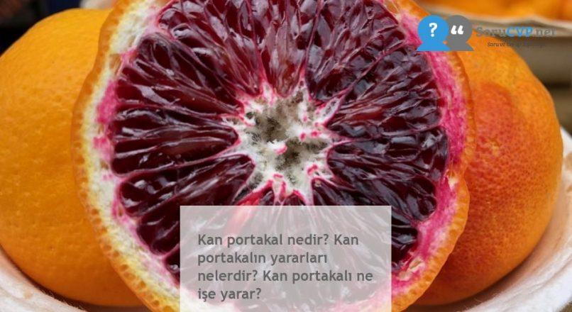 Kan portakal nedir? Kan portakalın yararları nelerdir? Kan portakalı ne işe yarar?