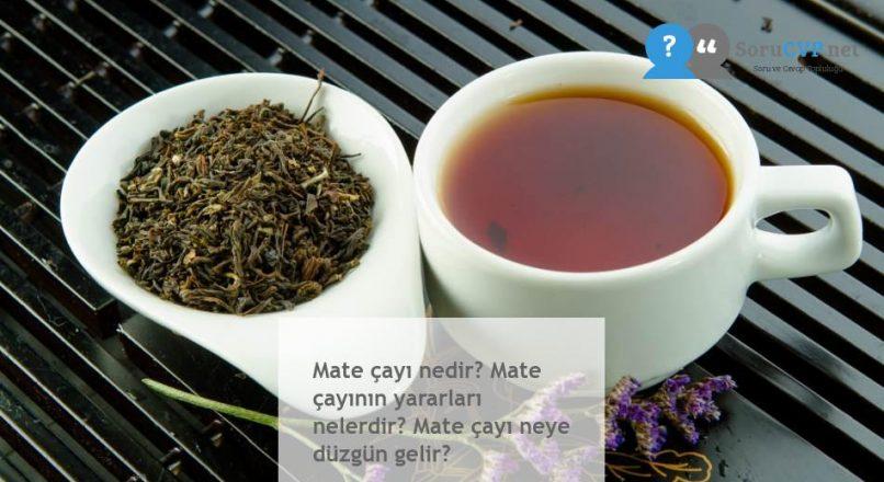 Mate çayı nedir? Mate çayının yararları nelerdir? Mate çayı neye düzgün gelir?