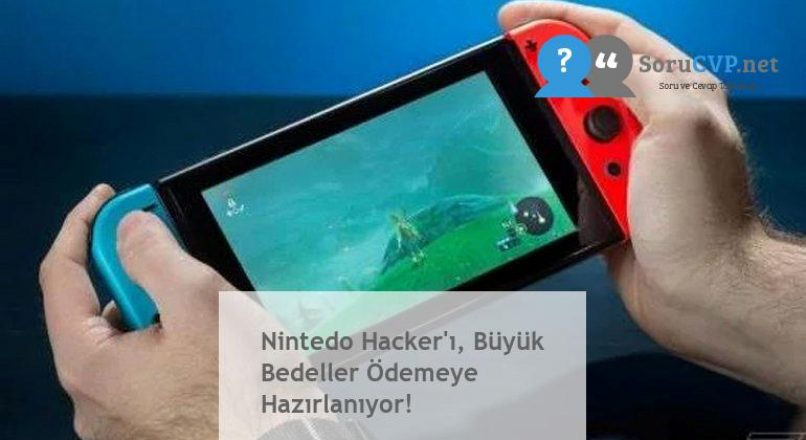 Nintedo Hacker'ı, Büyük Bedeller Ödemeye Hazırlanıyor!