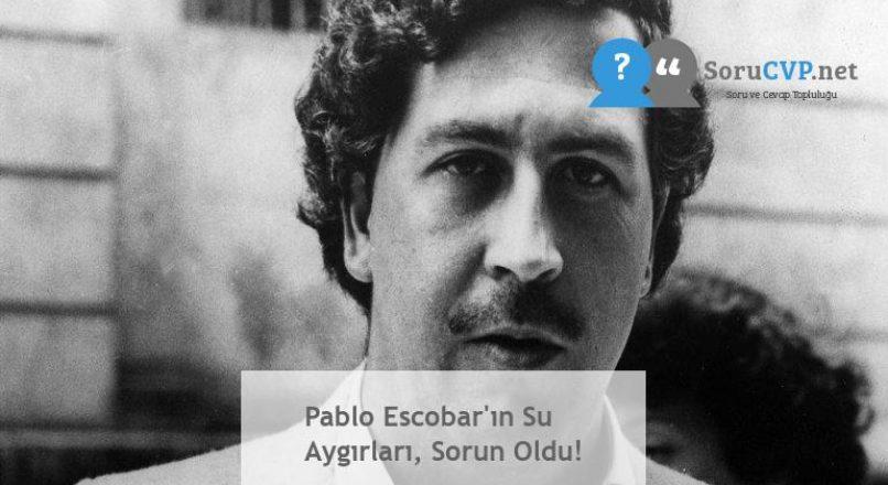 Pablo Escobar'ın Su Aygırları, Sorun Oldu!