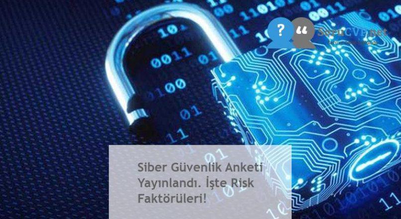 Siber Güvenlik Anketi Yayınlandı. İşte Risk Faktörüleri!