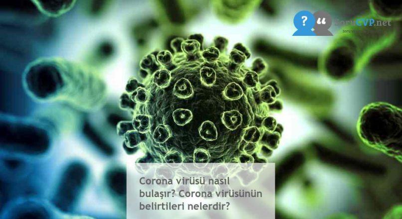 Corona virüsü nasıl bulaşır? Corona virüsünün belirtileri nelerdir?
