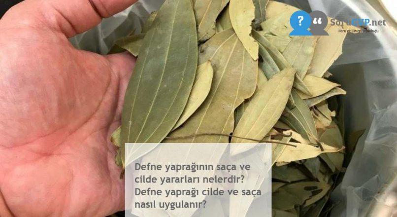 Defne yaprağının saça ve cilde yararları nelerdir? Defne yaprağı cilde ve saça nasıl uygulanır?