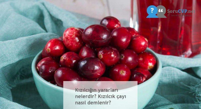 Kızılcık'ın Faydaları & Zararları Nelerdir, Çayı Nasıl Yapılır?