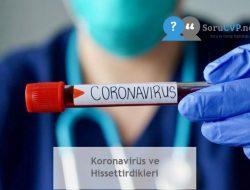 Koronavirüs ve Hissettirdikleri