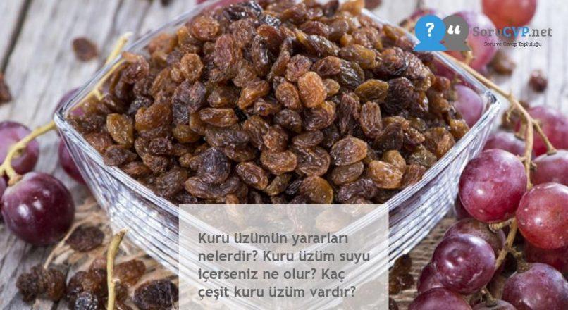 Kuru üzümün yararları nelerdir? Kuru üzüm suyu içerseniz ne olur? Kaç çeşit kuru üzüm vardır?