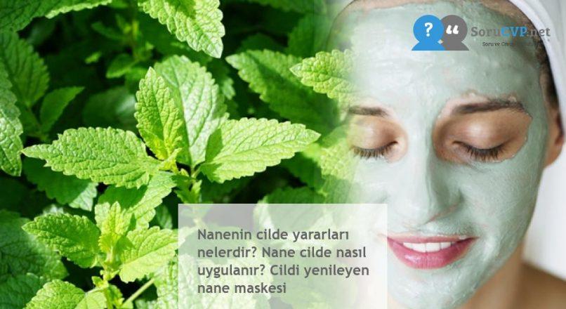 Nanenin cilde yararları nelerdir? Nane cilde nasıl uygulanır? Cildi yenileyen nane maskesi