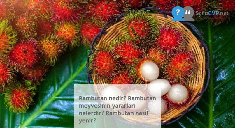 Rambutan nedir? Rambutan meyvesinin yararları nelerdir? Rambutan nasıl yenir?