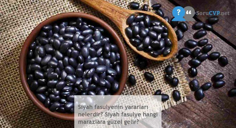 Siyah fasulyenin yararları nelerdir? Siyah fasulye hangi marazlara güzel gelir?