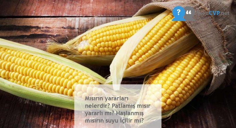Mısırın yararları nelerdir? Patlamış mısır yararlı mı? Haşlanmış mısırın suyu içilir mi?